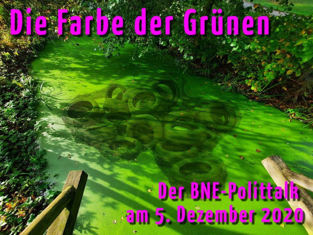 Die Farbe der Grünen - der BNE-Polittalk am 5. Dezember 2020